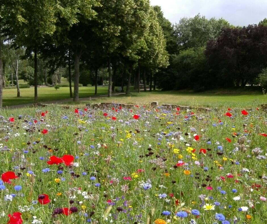 Monuments parcs jardins activités idées compatibles Covid-19